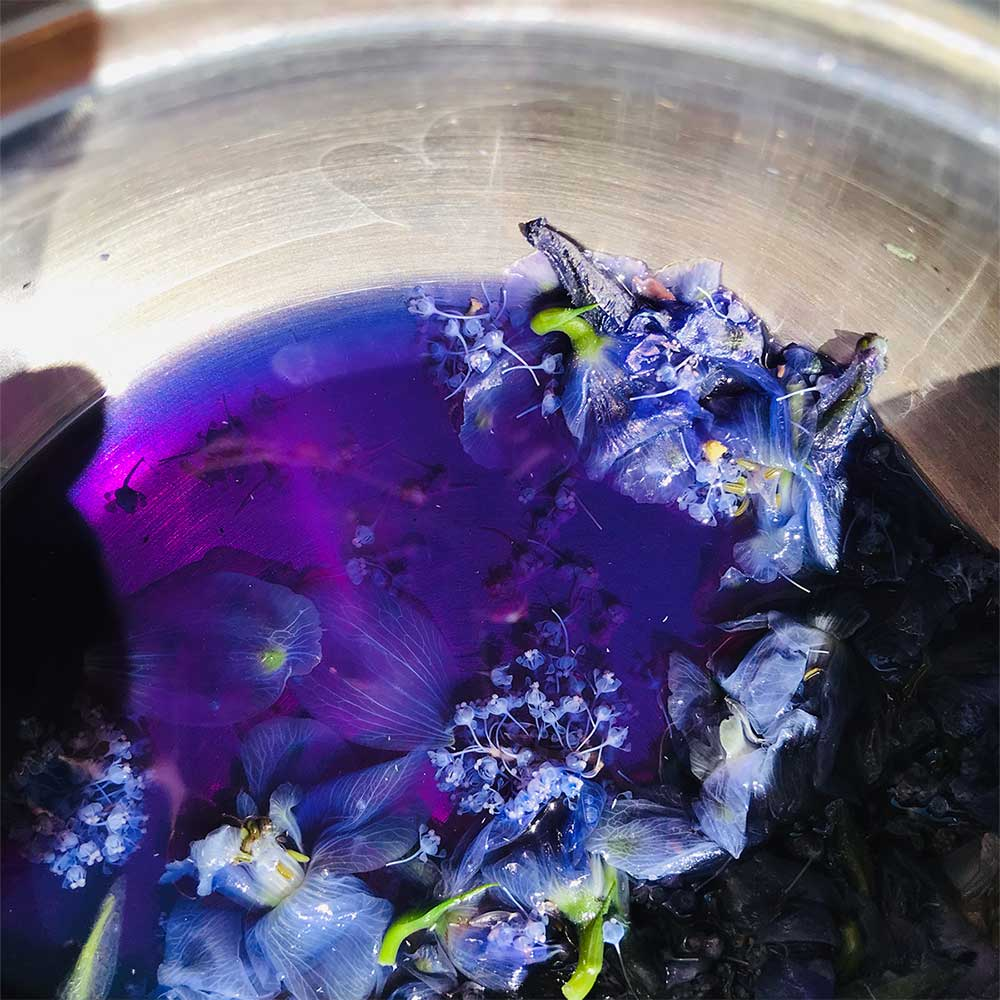 Ceanothus Blue Ink