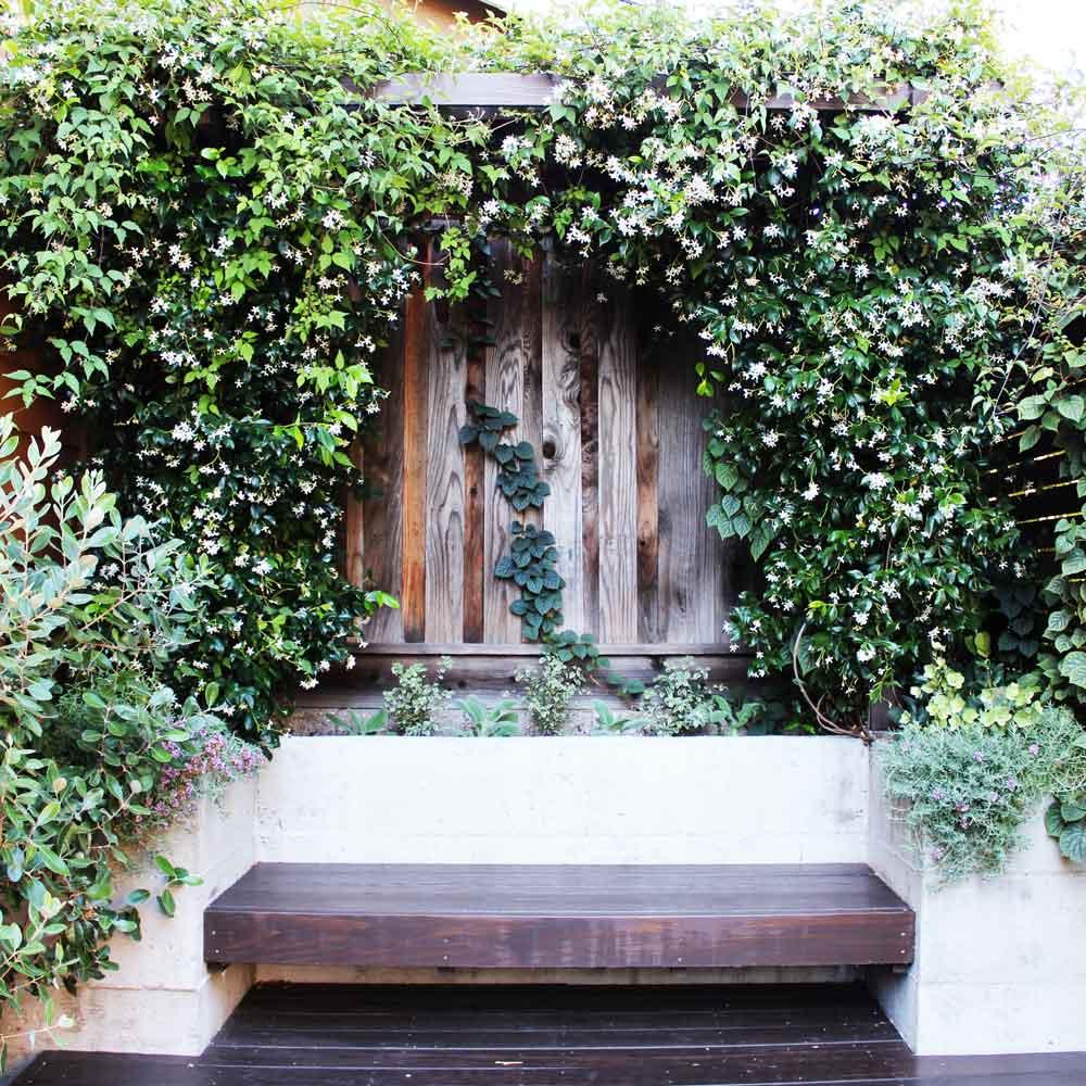 Landscape Design - Back Deck 3