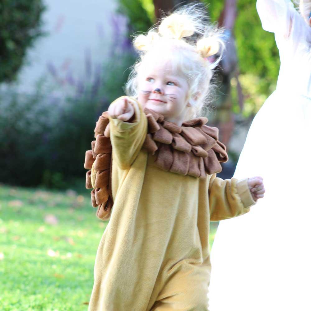Photography - Portrait - Little Lion